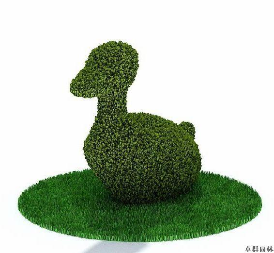 脱水植物动物造型1